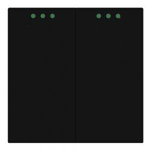 Mechaninis jungiklis dvipolis(juodas)